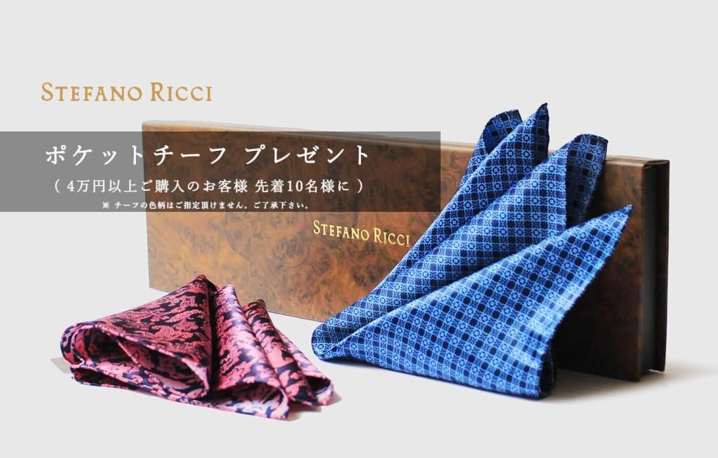 ステファノリッチのネクタイとポケットチーフです。銀座HIKOが販売しています。